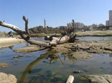 Предупреждение: сточные воды сброшены в речку Лахиш