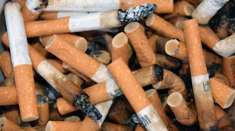 Все про табачные изделия где можно купить оптом сигареты из белоруссии