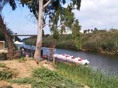 Скоро: прогулки на водных велосипедах по речке Лахиш
