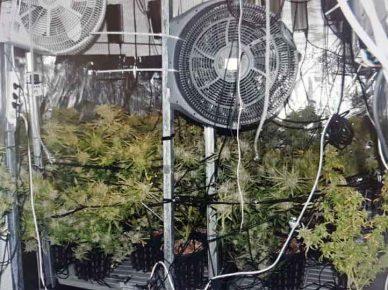 Полиция накрыла огромную нарколабораторию в ашдодской квартире